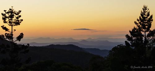 australia janetteasche lamingtonnationalpark oreillys qld queensland sonya7r scenicrim sunset evening light layers landscape trees explore