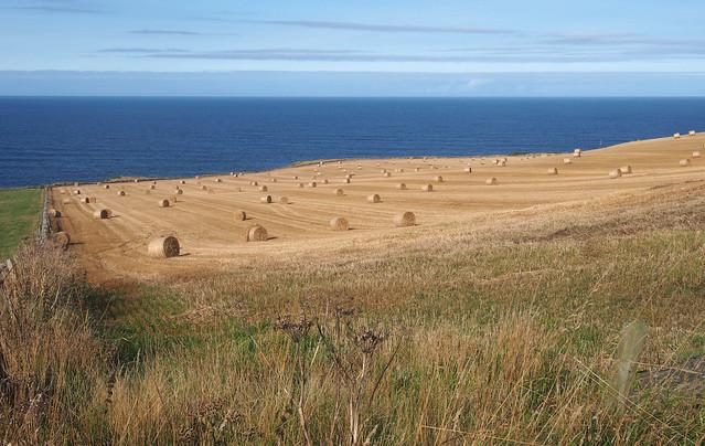 West of Aberdour Bay