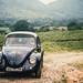 VW Beetle por Bo47