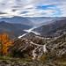 Autumnal Kozjak by ✓ Elena Pejchinova