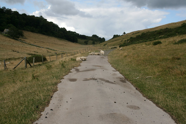 Path to Kingston village