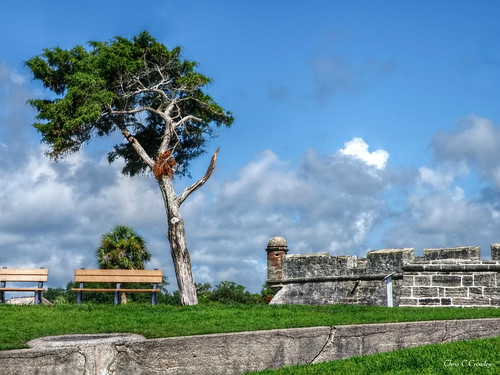 castillodesanmarcos fort staugustineflorida turret walls coquina benches parkbenches cedartree trees grass lawn sky clouds bluesky nationalpark nationalmonument historic