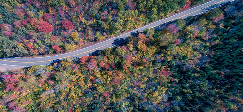 autumn groton ndfilter aerial fall orange red trees drone road dji vermont phantom4 statepark landscape pavement foliage unitedstates us