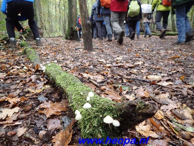 2016-11-09  Gooimeer tocht   25 KM   (68)