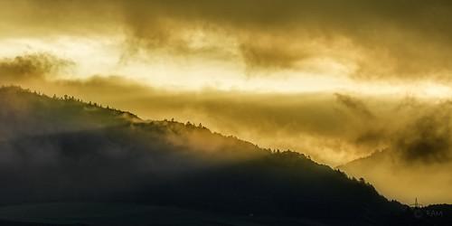 morning trees light sun mist mountains fog clouds sunrise austria golden tirol hour reute nassbereich canon5dsr 5dsr