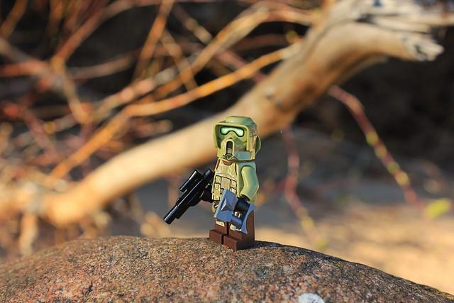 Kashyyk Scout Trooper