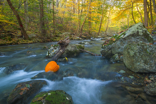 autumn fall water river pumpkin virginia us long exposure unitedstates tye tyro