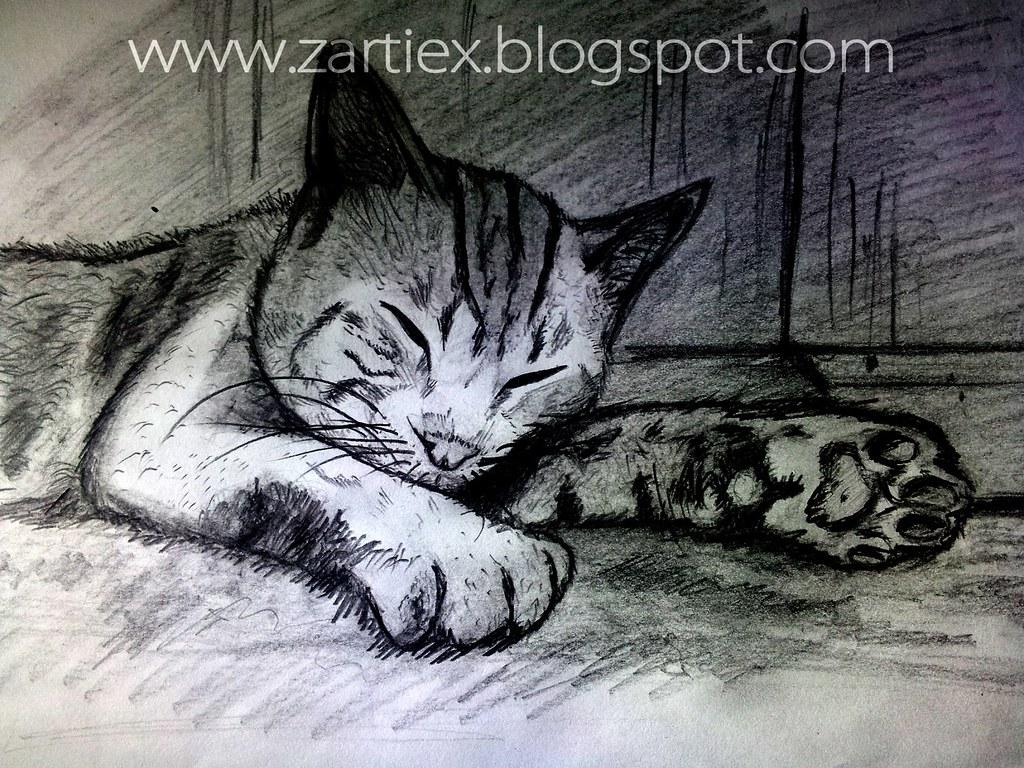 Dibujos De Gatos A Lapiz Como Hacer Letras 3d De Graffitis Flickr
