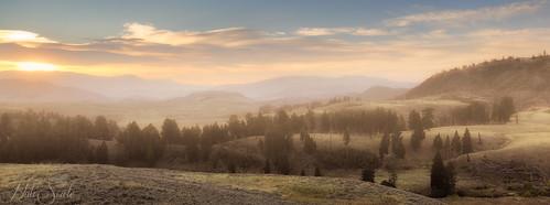 morning fog sunrise landscape golden montana yellowstonenationalpark yellowstone wyoming nationalparks