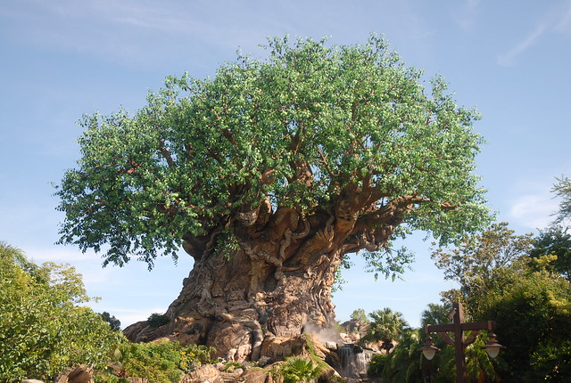 Disney's Animal Kingdom, Walt Disney World - Orlando, FL