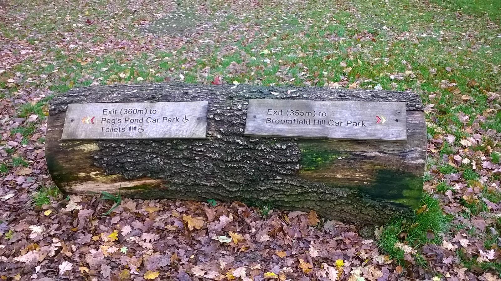 Logtastic! Isabella Plantation Richmond park