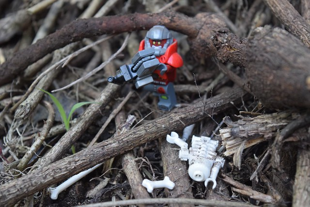 Space Ork in the Forest Wasteland