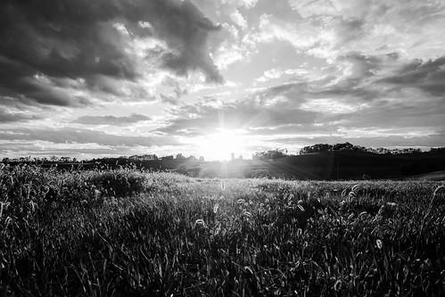 sunset blackandwhite landscape unitedstates pennsylvania farm herminie