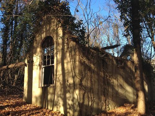 trees windows buildings vines woods shadows decay maryland ivy shadowplay iphone owingsmills garrisonforest hww