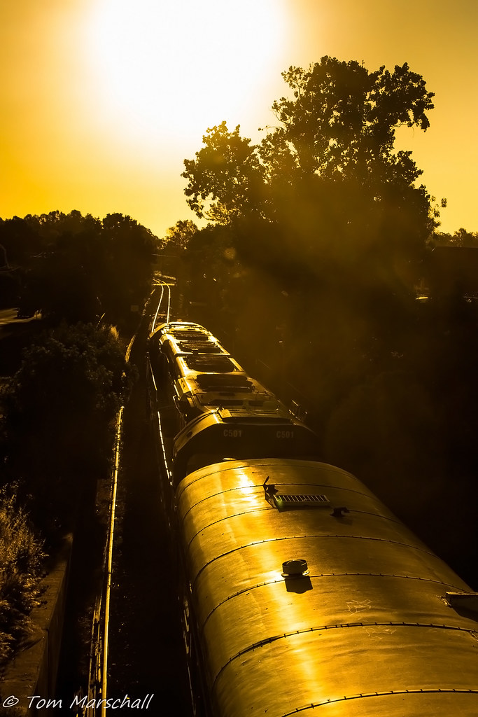 Chasing the sun by Tom Marschall