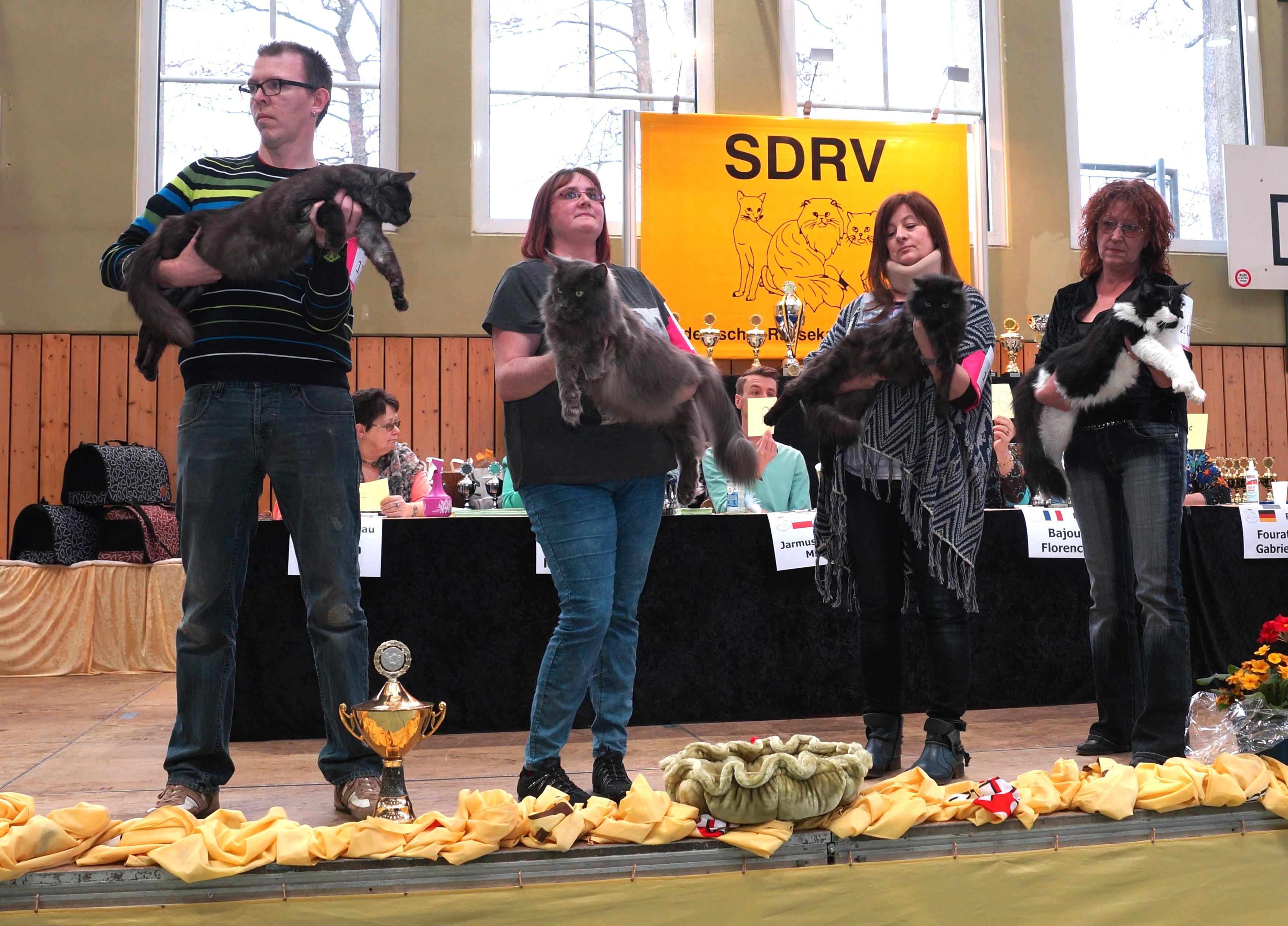 SDRV Memmelsdorf 2016 - BIS Samstag