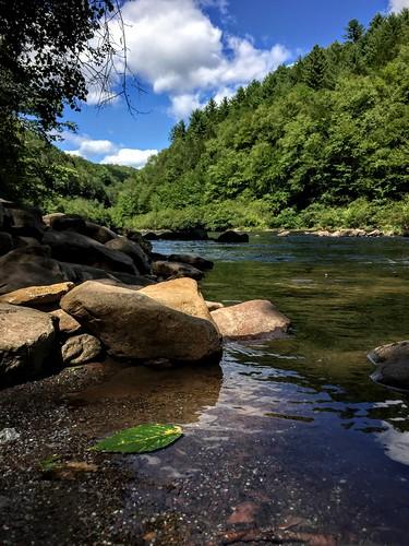 park white haven tree green leaf state gorge lehigh lehighriverlehighgorgeparkpoconomountainspennsylvanianaturelandscaperivermountainriverrivergorgefoliagewhitewater