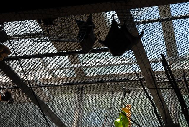Philadelphia Zoo - Philadelphia, PA