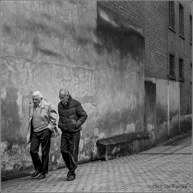 Old friends in a back alley BW