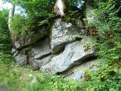 Alpsee-Bergwelt_1210025