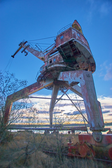 Cranes on the Pripyat River-(Chernobyl Exclusion Zone)_5