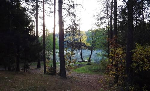 lake morning fog mist autumn lithuania lietuva