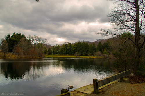 trees winter sky lake water clouds reflections newjersey pond nikon cloudy westmilford melodylake d3100 smack53 palpond