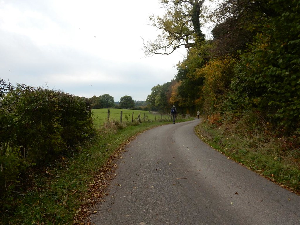 twisty lane Witley to Haslemere