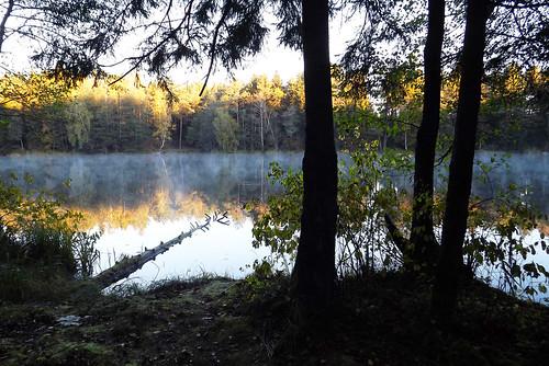 lake glow nature lithuania morning autumn water