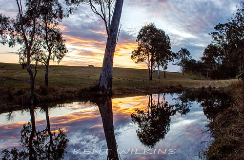 trees sunset lake water clouds reflections landscape dam australia queensland southeast ipswich infocus highquality
