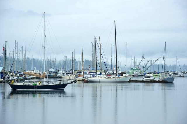 another rainy day at the bay . . .