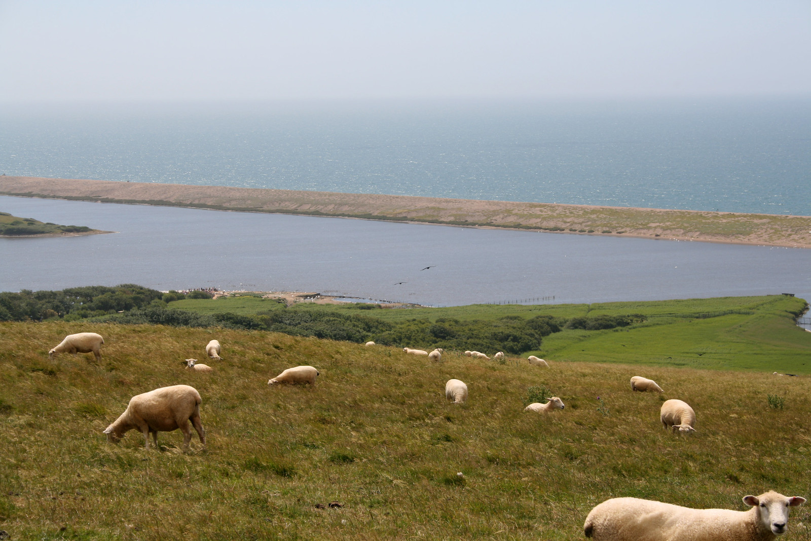 Chesil Beach from St Catherine's Chapel, Abbotsbury