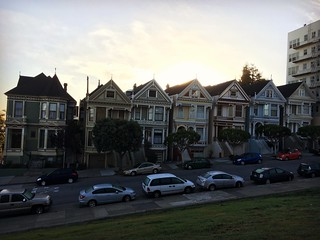 Painted ladies | by Lady Madonna