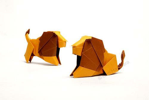 Lion by Gen Hagiwara | by N. Terry