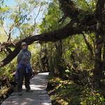 Di, 03.11.15 - 12:31 - Parque Nacional Chiloe