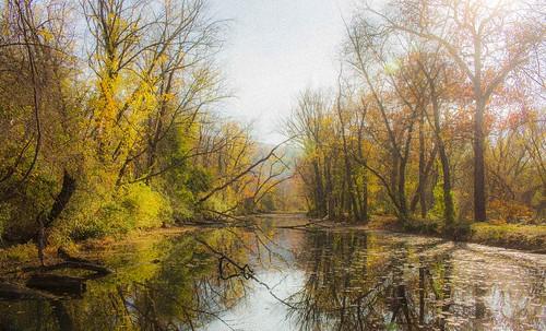 cocanal evittscreekaqueduct fall autumn reflection