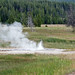Rejuvenated Geyser (UNNG-WDG-1) (White Dome Group, Lower Geyser Basin, Yellowstone Hotspot Volcano, nw Wyoming, USA)