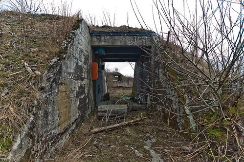 jarlsberg ammo7