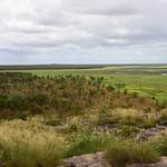 02 Viajefilos en Australia, Kakadu NP 025