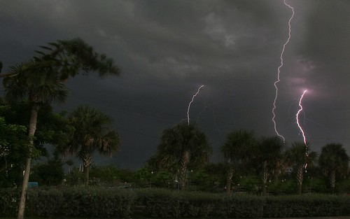 longexposure trees storm weather night clouds landscape nightscape thunderstorm nightsky nightscene lightning extremeweather sebastianfl lightningstorm indianrivercounty kmprestonphotography projectweather 97839883990720150912005318mc