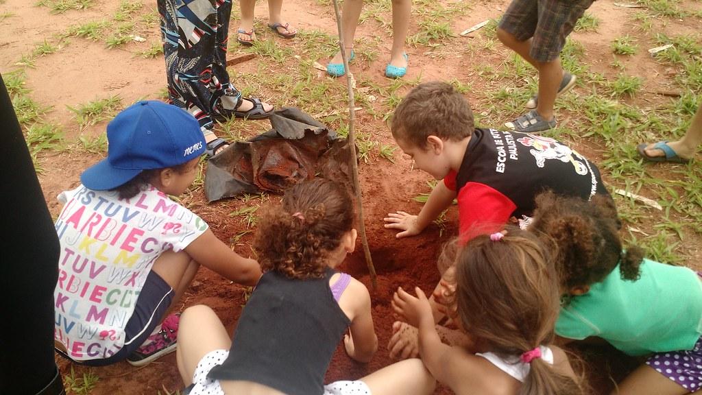 Crianças da creche Doce Recanto ajudaram a plantar as mudas