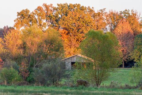 fall southernillinoissunsets