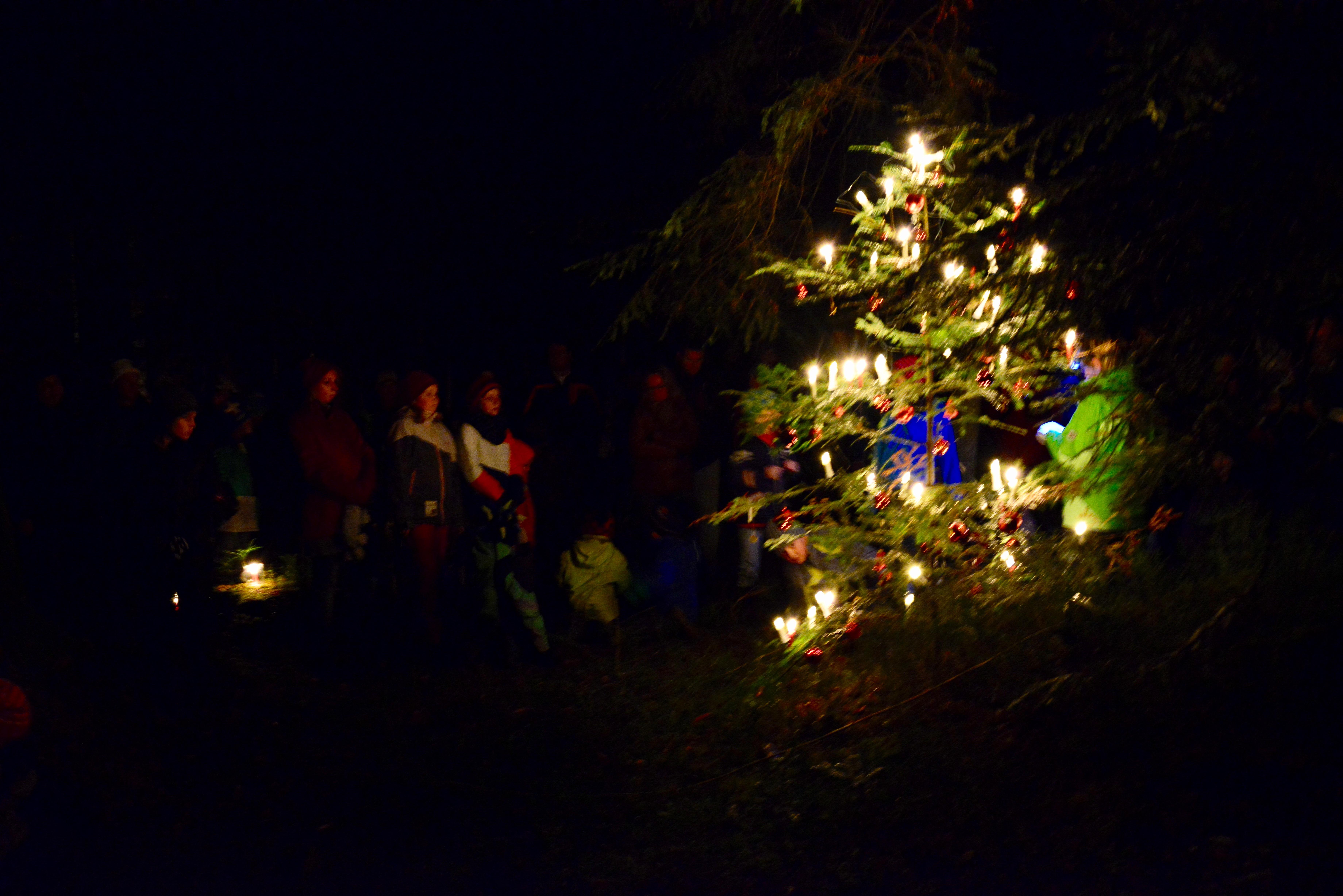 Verein - Waldweihnachten 2015