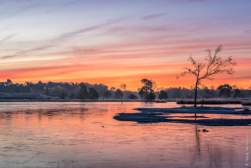 hatertsevennen bevroren blauw frozen geel ice ijs landscape landschap oranje rood sunrise vennen water zonsopkomst overasselt gelderland nederland nl outdoor fire
