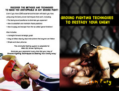 Ground Fighting Techniques to Destroy Your Enemy: Mixed Martial Arts, Brazilian Jiu Jitsu and Street Fighting Grappling Techniques and Strategy