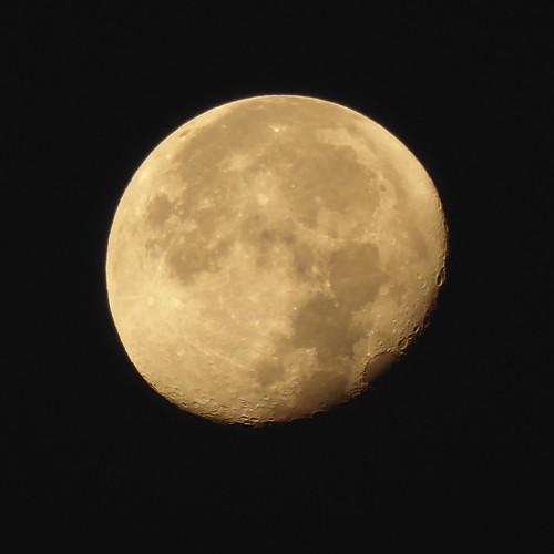 morning moon | by Steve Rawley