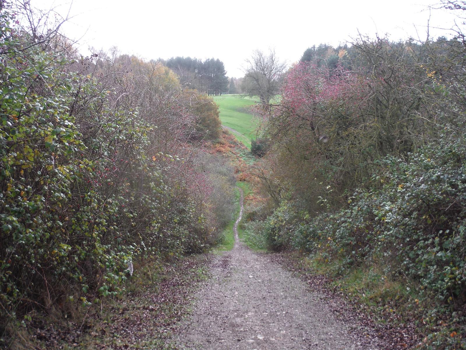 Steep Descent along the Greensand Ridge Walk SWC Walk 232 Lidlington to Flitwick