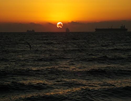 ships dawn sunrise dorset weymouth birds reflections weymouthbay