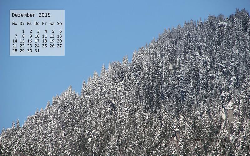 winterwald_dezember_kalender_die-photographin