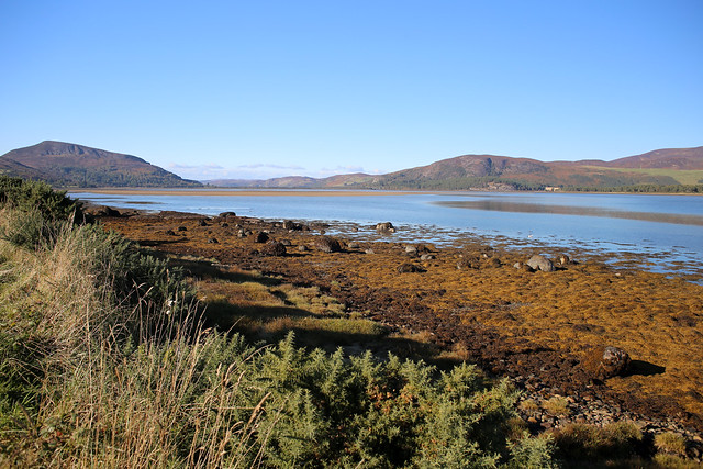 The southern shore of Loch Fleet